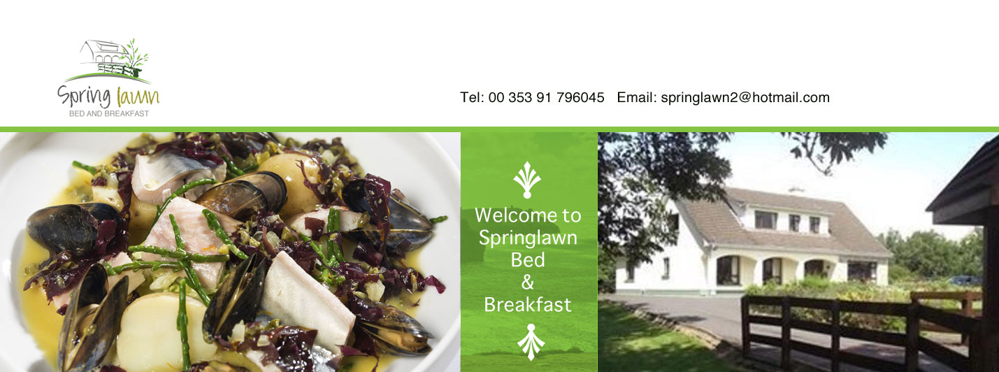 Galway bed and Breakfast